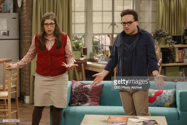 'The Explosion Implosion' Pictured Amy Farrah Fowler and Leonard Hofstadter Howard and Sheldon bond when they drive to the desert to shoot off a...
