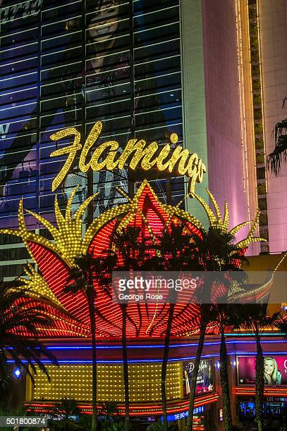 The exterior of the Flamingo Hotel Casino located on Las Vegas Blvd is viewed after dark on December 4 2015 in Las Vegas Nevada Tourism in America's...