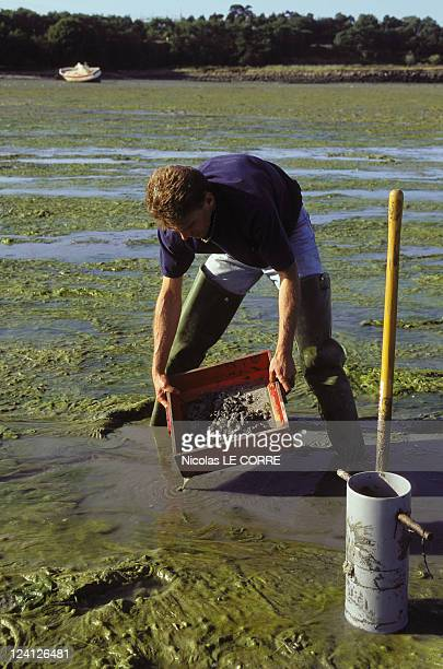 The factory 30 years of 'La Rance' tidal power station In Saint Malo France On July 23 1996 Sampling on the silt banks for the Dinard coasta...