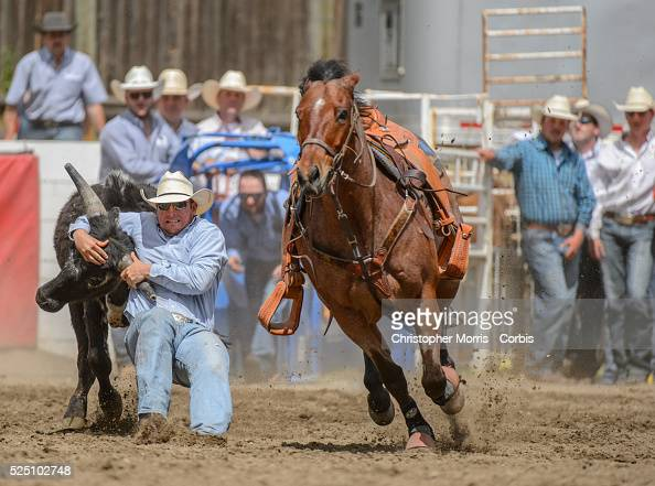 Rodeo - 97th Annual Falkland Stampede Pictures | Getty Images
