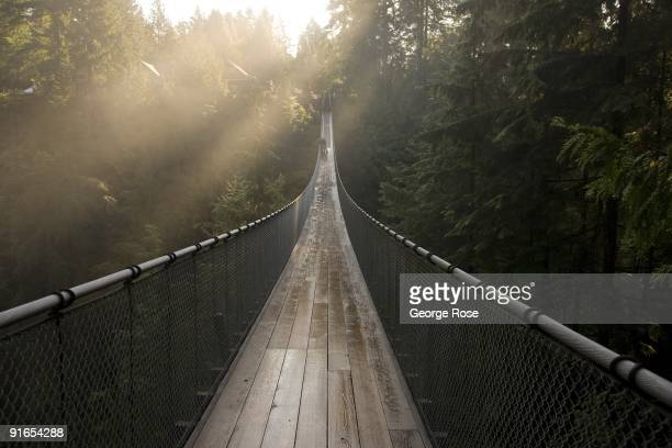 The famed 450foot Capilano Suspension Bridge is seen in this 2009 Vancouver British Columbia Canada early morning landscape photo This West Coast...
