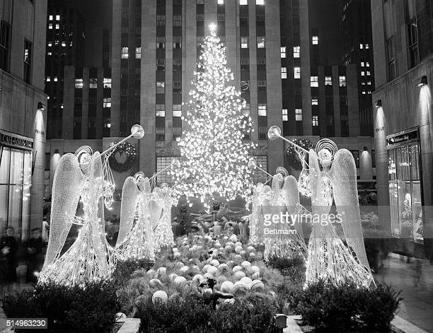The famed Rockefeller Center Christmas tree this year a Norway spruce 65 feet high lights up the plaza and the skating rink as the switch is thrown...