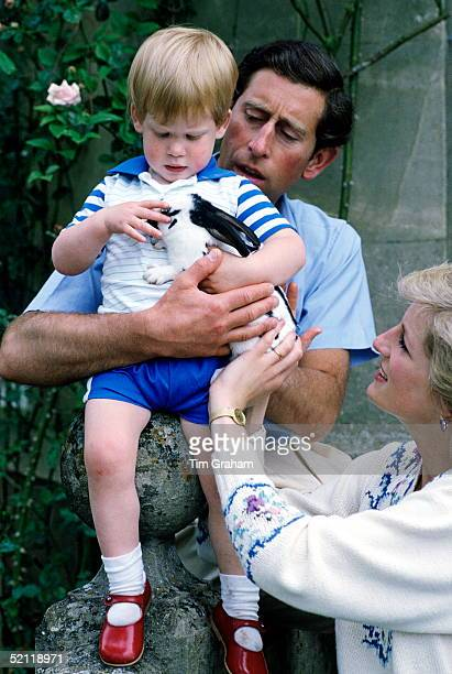 The Family Pet Rabbit Is Held By Prince Harry With His Parents Princess Diana And Prince Charles At Home At Highgrove House