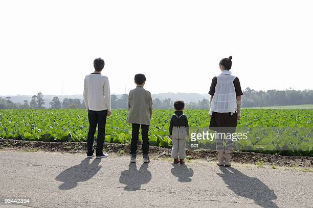 The family watching in field,rear view