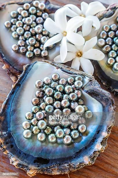 The famous black pearls of Tahiti, Polynesia