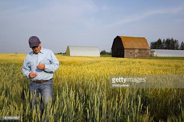 Le Agriculteur