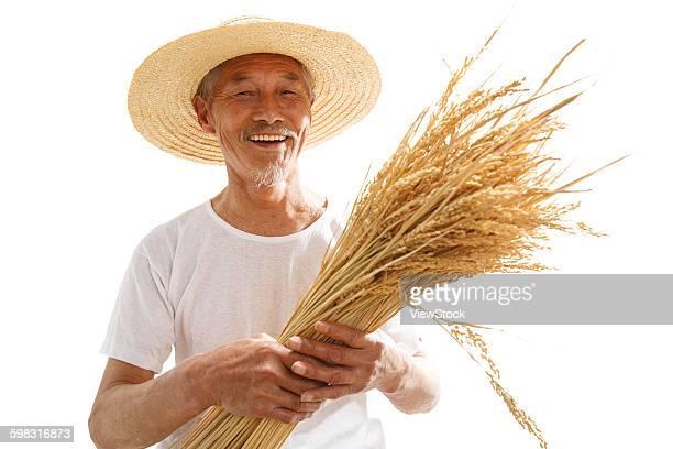 The farmer took rice
