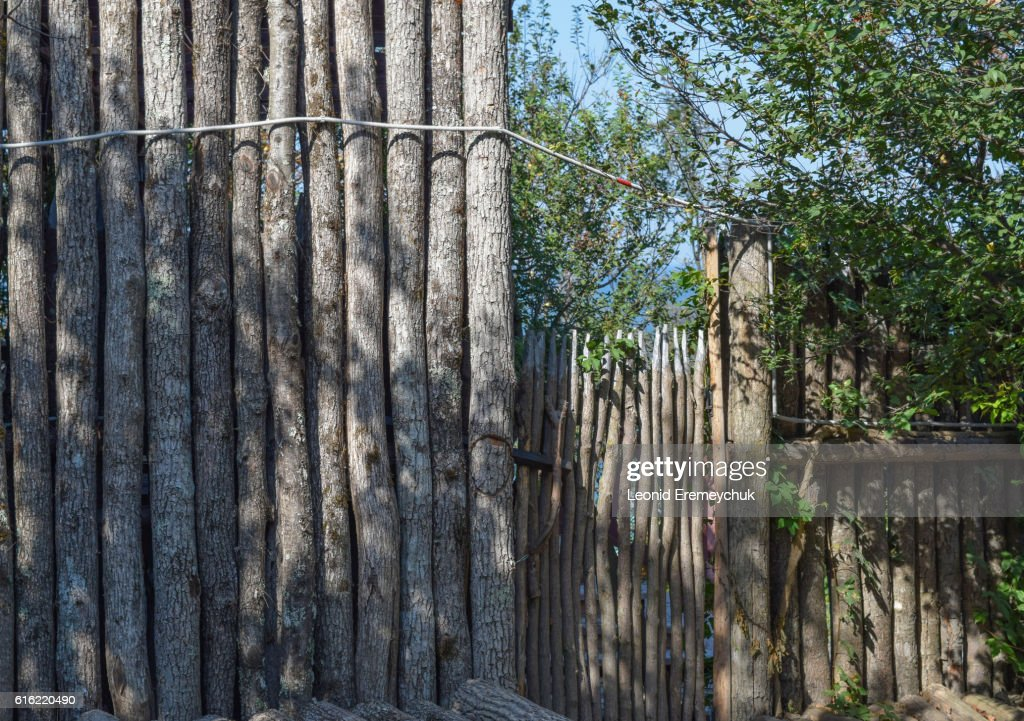 The fence and gate made of logs : Stock Photo