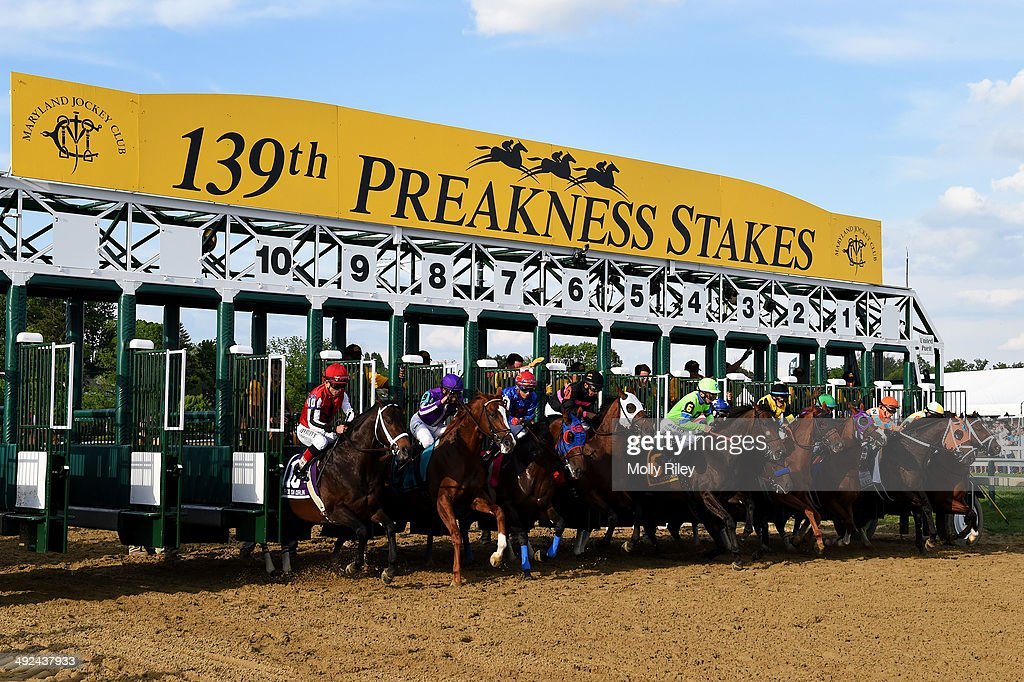 The field breaks from the gate during the 139th running of the Preakness Stakes at Pimlico Race Course on May 17 2014 in Baltimore Maryland