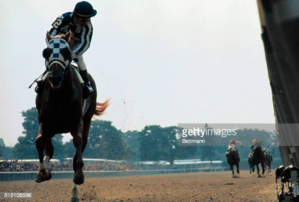 The field is so far behind jockey Ron Turcotte has to turn in the saddle to look for it as he guides Secretariat to victory in the Belmont Stakes
