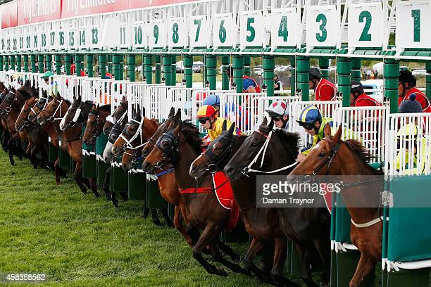 The field jumps from the barriers in race 7 the Emirates Melbourne Cup on Melbourne Cup Day at Flemington Racecourse on November 4 2014 in Melbourne...