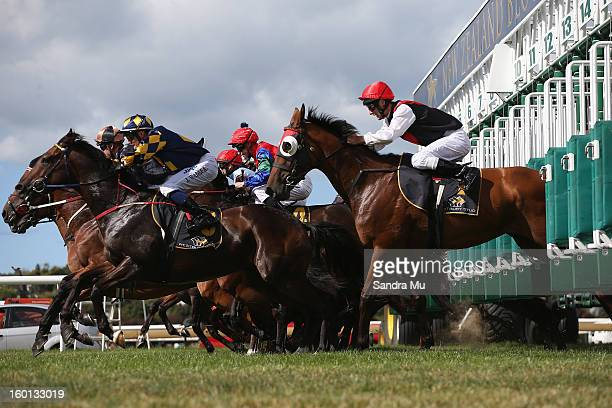 Horse Racing Gates Stock Photos And Pictures Getty Images
