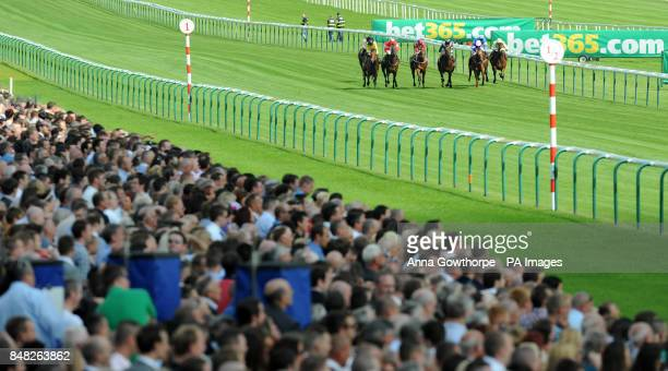 The field makes it way into the final furlong during the Mobile At bet365com Nursery Handicap Stakes during the bet365 Old Newton Cup/Lancashire Oaks...
