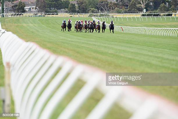 The field races up the home straight in Race 8 during Melbourne Racing at Sandown Racecourse on December 5 2015 in Melbourne Australia