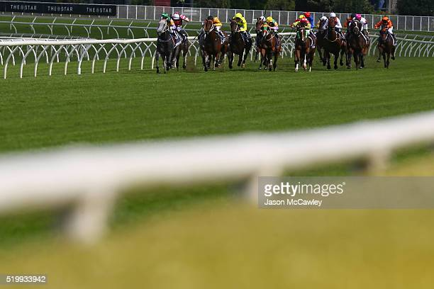 The field ride down the straight during Race 3 in the Provincial Championships Final during Queen Elizabeth Stakes Day at Royal Randwick Racecourse...