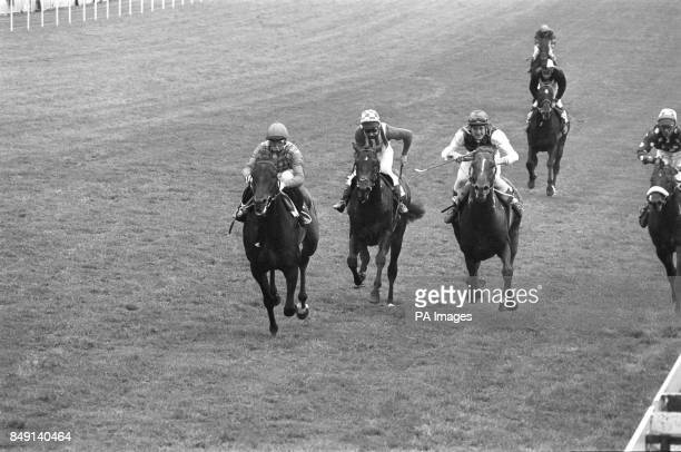 The final stretch of the Moet Chandon Silver Magnum for amateur riders at Epsom Tim Easterby on Sea Pigeon Eddie Woods on McAdam and John Hills on...