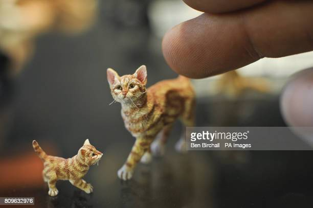 The fingerprint lines can be seen on a human finger which shows how tiny each hair on the coat's of Cat Kitten made by Sarah Hendry are on these...