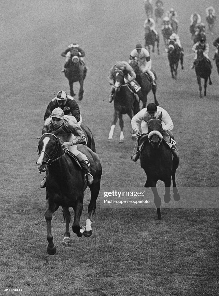 The finish of the 1954 Epsom Derby, with <a gi-track='captionPersonalityLinkClicked' href=/galleries/search?phrase=Lester+Piggott&family=editorial&specificpeople=208072 ng-click='$event.stopPropagation()'>Lester Piggott</a> on Never Say Die winning by two lengths, 2nd June 1954. Arabian Night, ridden by Tommy Gosling, is on the left, and Darius, ridden by E. Mercer, is on the right - they came second and third respectively.