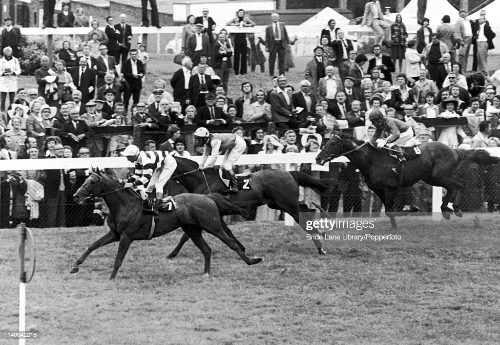 The finish of the Gold Cup on the second day of Royal Ascot, 17th June 1976. Sagaro (7) comes in first, with <a gi-track='captionPersonalityLinkClicked' href=/galleries/search?phrase=Lester+Piggott&family=editorial&specificpeople=208072 ng-click='$event.stopPropagation()'>Lester Piggott</a> up, followed by Crash Course (2) with B. Taylor up and Sea Anchor (8), ridden by <a gi-track='captionPersonalityLinkClicked' href=/galleries/search?phrase=Joe+Mercer&family=editorial&specificpeople=228537 ng-click='$event.stopPropagation()'>Joe Mercer</a>.