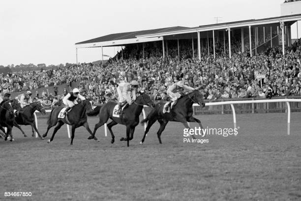 The finish of the race when the Barnsley trainer Steve Norton took first and second place Winner 'Leysh' John Lowe riding can be seen right with...