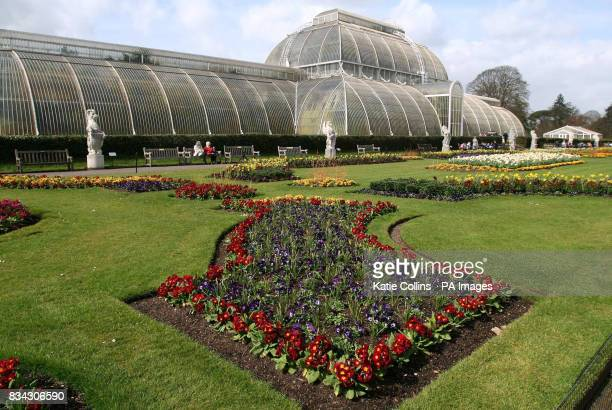 The first largescale structural use of wrought iron the Palm House which was designed by Charles Lanyon and construction by Richard Turner was...