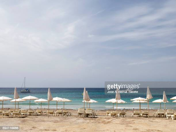The first line of beach with lines of parasols and tumbonas in the beach of on the island of Tabarca, Alicante, Valencian Community, Spain.