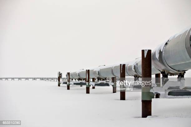 The first mile of the 800mile TransAlaska Pipeline extends across the frozen tundra near the Alyeska Pipeline Services Co pump station in Prudhoe Bay...
