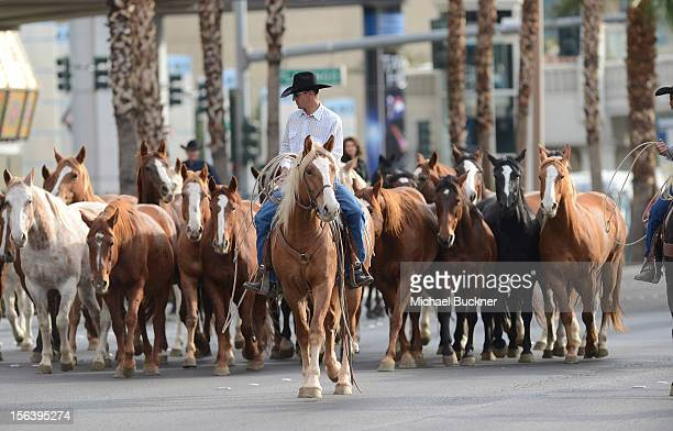 The firstever orchestrated horse stampede shuts down the Las Vegas Strip and marks Shania Twain's arrival to The Colosseum at Caesars Palace on...