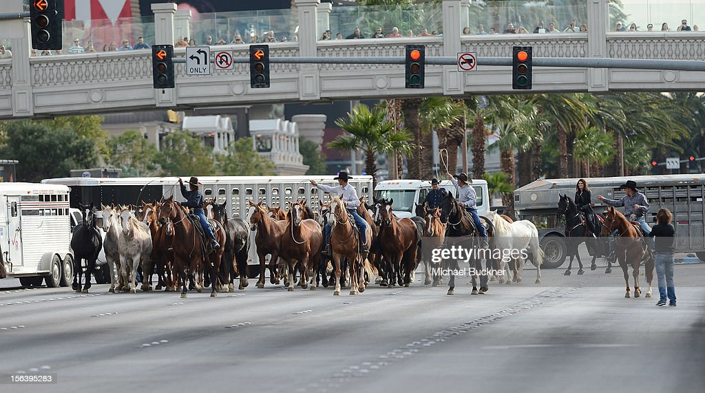 The first-ever orchestrated horse stampede shuts down the Las Vegas Strip and marks <a gi-track='captionPersonalityLinkClicked' href=/galleries/search?phrase=Shania+Twain&family=editorial&specificpeople=203173 ng-click='$event.stopPropagation()'>Shania Twain</a>'s arrival to The Colosseum at Caesars Palace on November 14, 2012 in Las Vegas, Nevada.