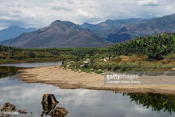 The Fishing Spot Upstream of Bhavani Sagar