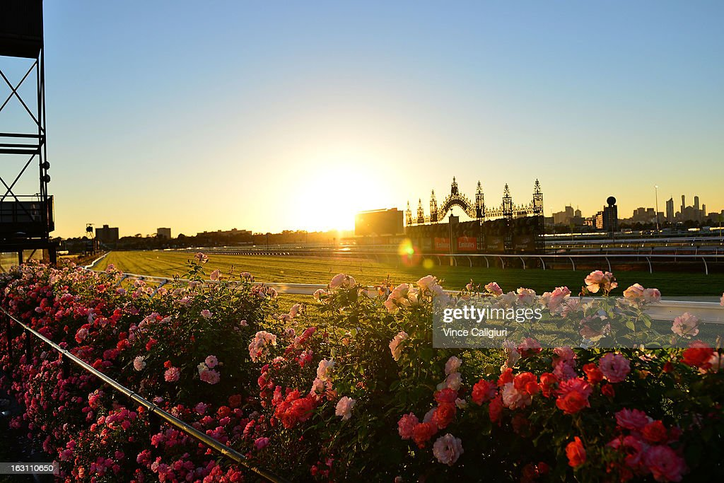 The Flemington roses in full bloom at Flemington Racecourse on March 5, 2013 in Melbourne, Australia.