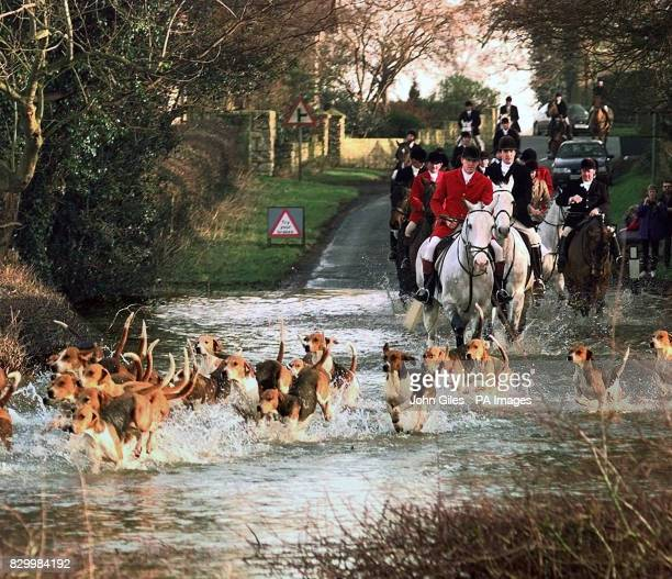 The flooded lanes around York caused by the torrential rain of the week fail to stop the York and Ainsty Hunt from riding out as the hounds and...