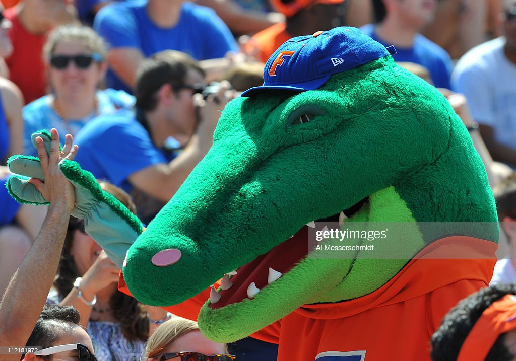 The Florida Gators mascot celebrates with fans during the Orange and Blue spring football game April 9 2011 at Ben Hill Griffin Stadium in...