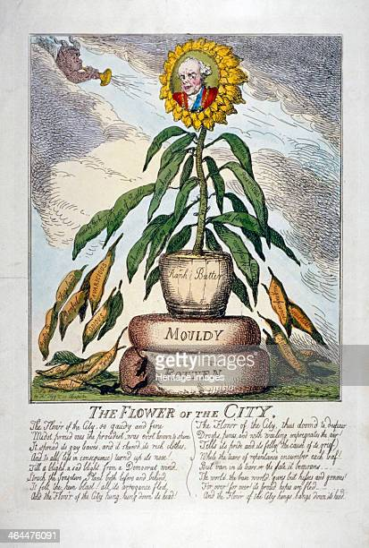 'The Flower of the City' 1809 The head of Charles Flower Lord Mayor is depicted within a wilted sunflower which has leaves labelled with his...