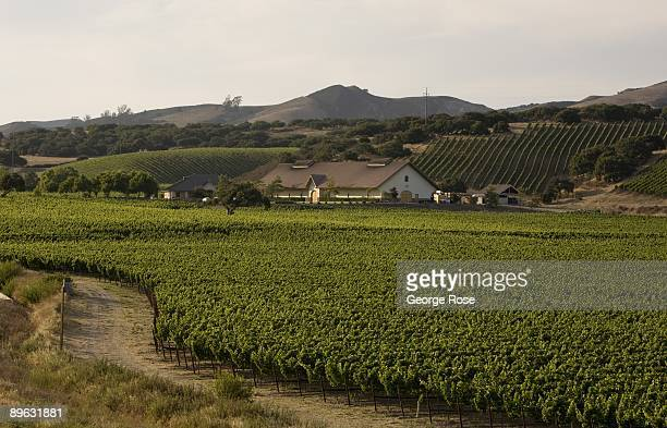 The Foley Estate Winery is seen in the distance in this 2009 Buellton Santa Barbara County California late afternoon landscape photo