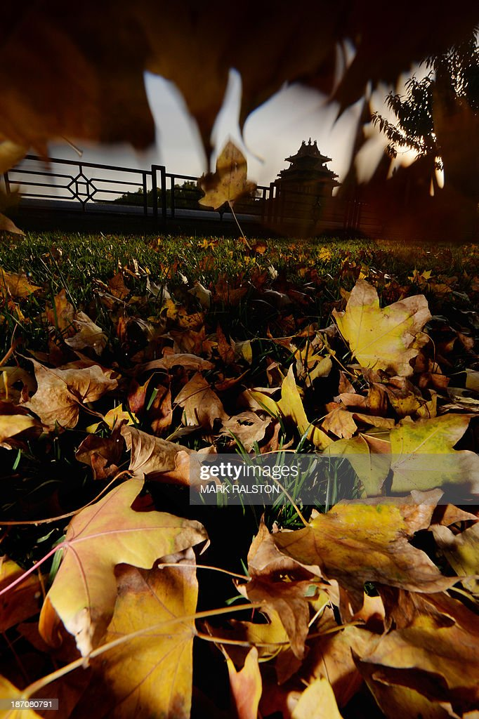 The Forbidden City (top centre R), also known as the Palace Museum, is seen through autumn leaves in Beijing on November 6, 2013. Autumn typically lasts from September to October in Beijing before the winter months when temperatures often fall below zero. AFP PHOTO/Mark RALSTON