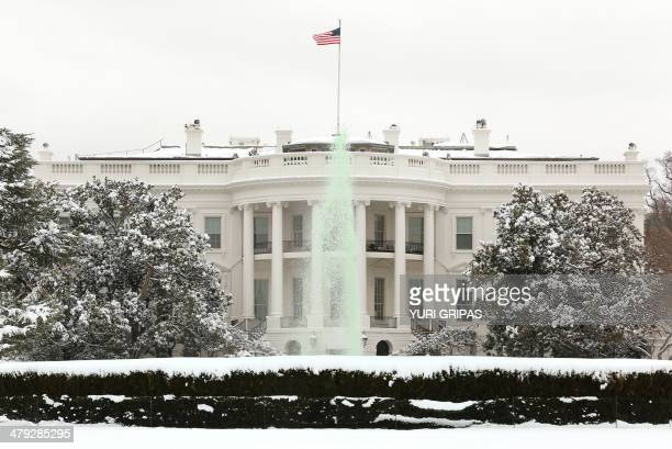 The fountain dyed green for St Patrick's Day is seen on the south lawn of the White House in Washington DC on March 17 2014 AFP PHOTO/YURI GRIPAS