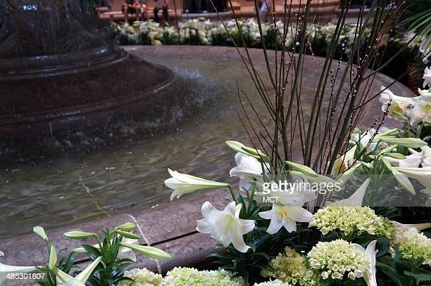 The fountain in the Rotunda of the National Gallery of Art in Washington DC April 13 is surrounded by pussy willows Easter lilies and hydrangeas