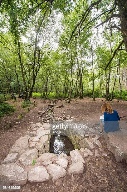 The Fountain of Barenton close to the hamlet of FollePensee in the forest of Paimpont August 2014 The fountain is the spot where according to legend...