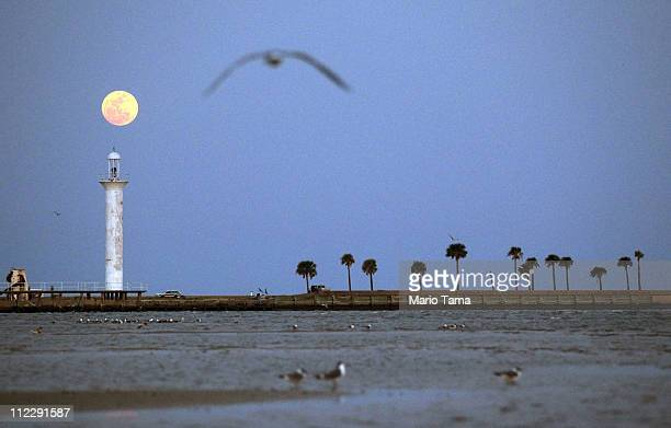 The full moon rises over Biloxi's beach and lighthouse as a bird flies overhead April 17 2011 in Biloxi Mississippi Biloxi's beaches continue to be...