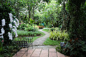 The garden is decorated in tropical jungle style for relaxation.