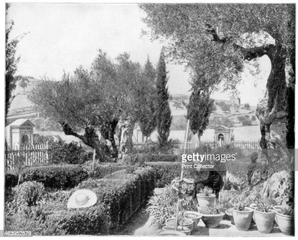 Jesus Au Jardin Des Oliviers Photos Et Images De Collection Getty Images
