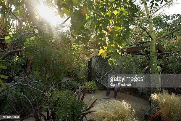 The garden of the Lund residence in Silverlake is where a swimming pool once stood Jeff Lund son of the owners sits on a hammock in the backyard on...
