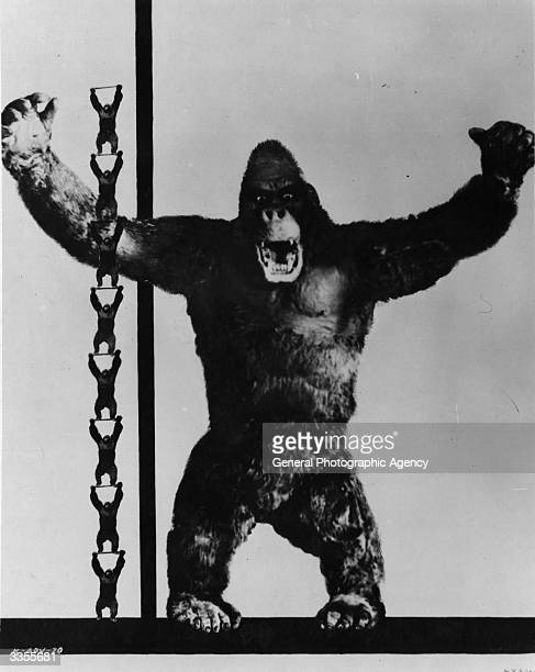The giant ape star of the Radio Picture 'King Kong' shown in comparison to eight normal sized apes to emphasize its colossal size