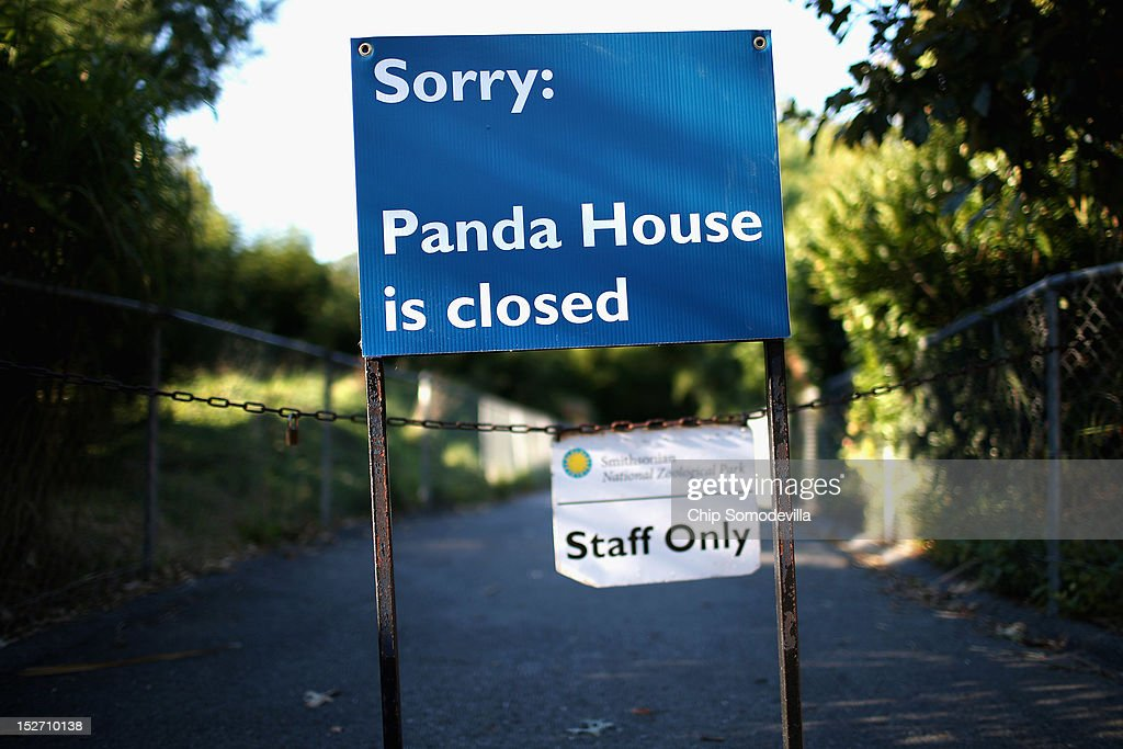 The giant panda house at the Smithsonian National Zoological Park remains closed the day after the death of a six-day-old panda cub at the zoo September 24, 2012 in Washington, DC. The preliminary necropsy of the 4-ounce female cub did not immediately reveal the cause of death but zoo Chief Veterinarian Dr. Suzan Murray said the initial exam made it appear the cub was not crushed by her mother.