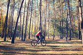 the girl is riding a bicycle through the woodsthe girl on a bicycle rides through a forest glade against a background of pines