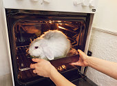 Go vegan. Promotion of vegetarianism, not to kill animals for meat. The girl takes it in the oven a rabbit. Live rabbit in the stove. Killing animals