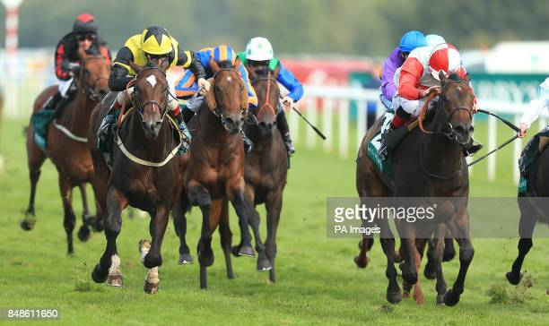 The Golden Cheongsam ridden by Franny Norton wins The Weatherbys pound300000 2YO Stakes during the Ladbrokes St Leger Festival at Doncaster Racecourse