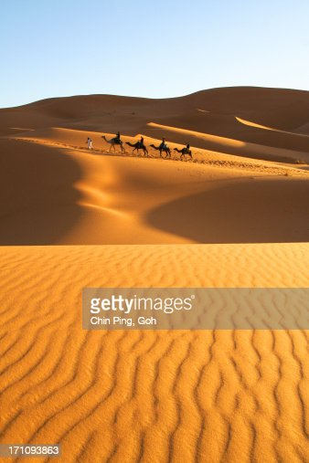 The Golden Sahara Desert