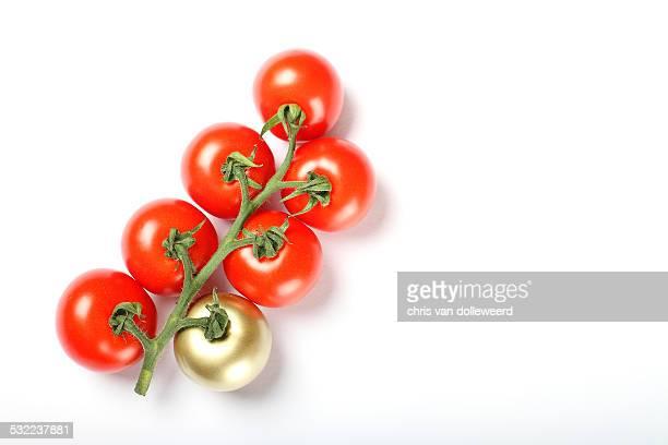 The golden tomato